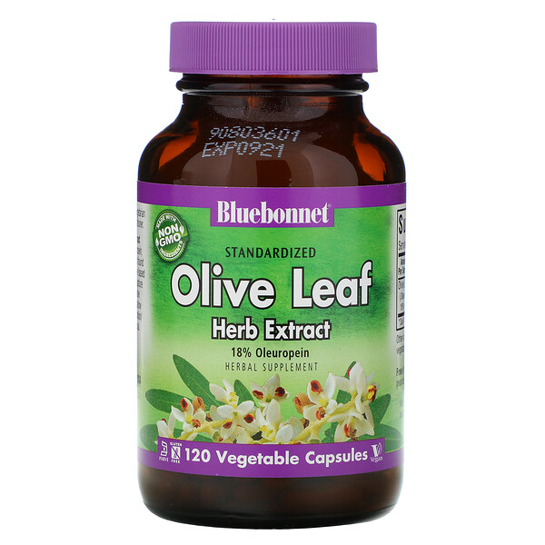 Olive Leaf, Herb Extract, 120 Vcaps
