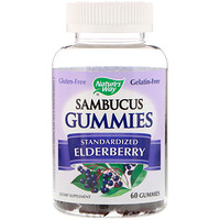 Sambucus, Standardized Elderberry, 60 Gummies - фото