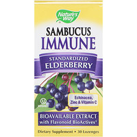 Sambucus Immune, Elderberry, Standardized , 30 Lozenges - фото